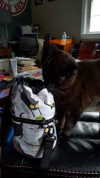black cat and knitting bag