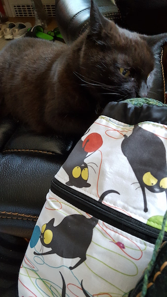 black cat and knitting project bag