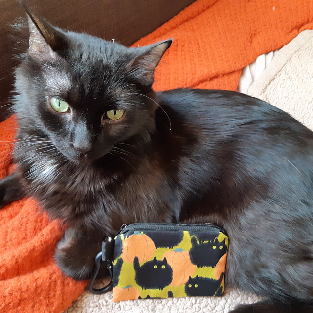 Belinda's Big Kitty coin purse and customers cat