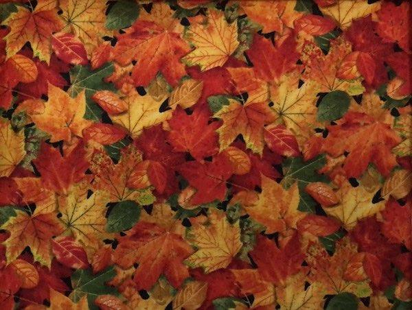 Fall leaves adjustable face mask