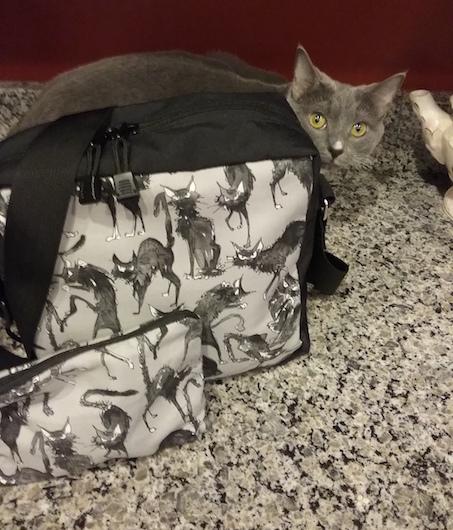 black cat shoulder bag