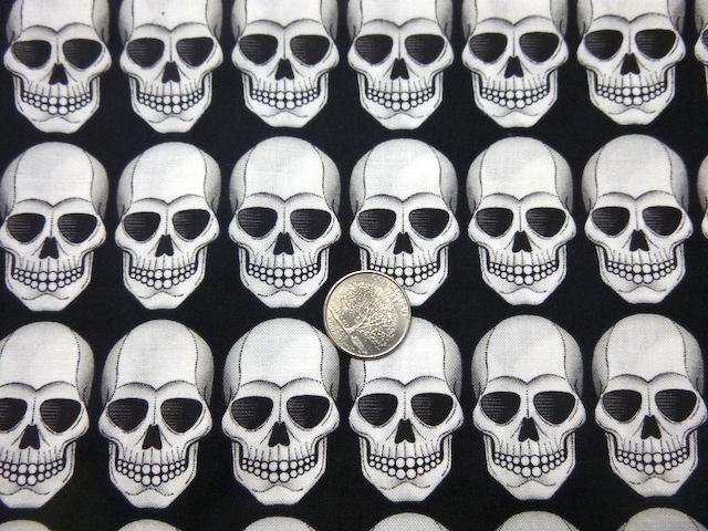 skulls on black pencil case