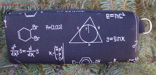 math padded glasses case