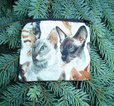 Celebrate Cats Coin Purse, The Raven