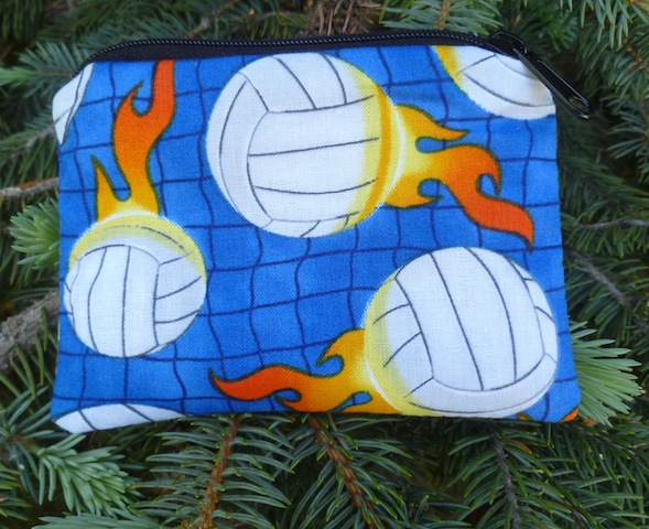 Volleyballs on blue Coin Purse, The Raven